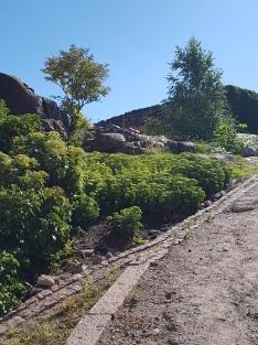 Der begehbare Fels, der die Aussenmauer bildet.